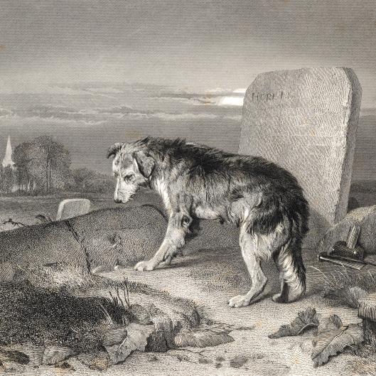 The shepherd's grave