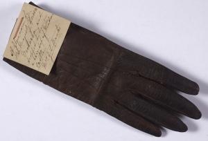Queen Victoria's Glove