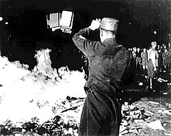 Nazis burn books and archives from the library of the Institut für Sexualwissenschaft, May 1933, Berlin © Wikimedia Commons
