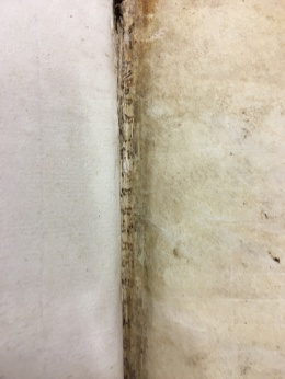 Latin MS 98, manuscript fragment inside lower board.